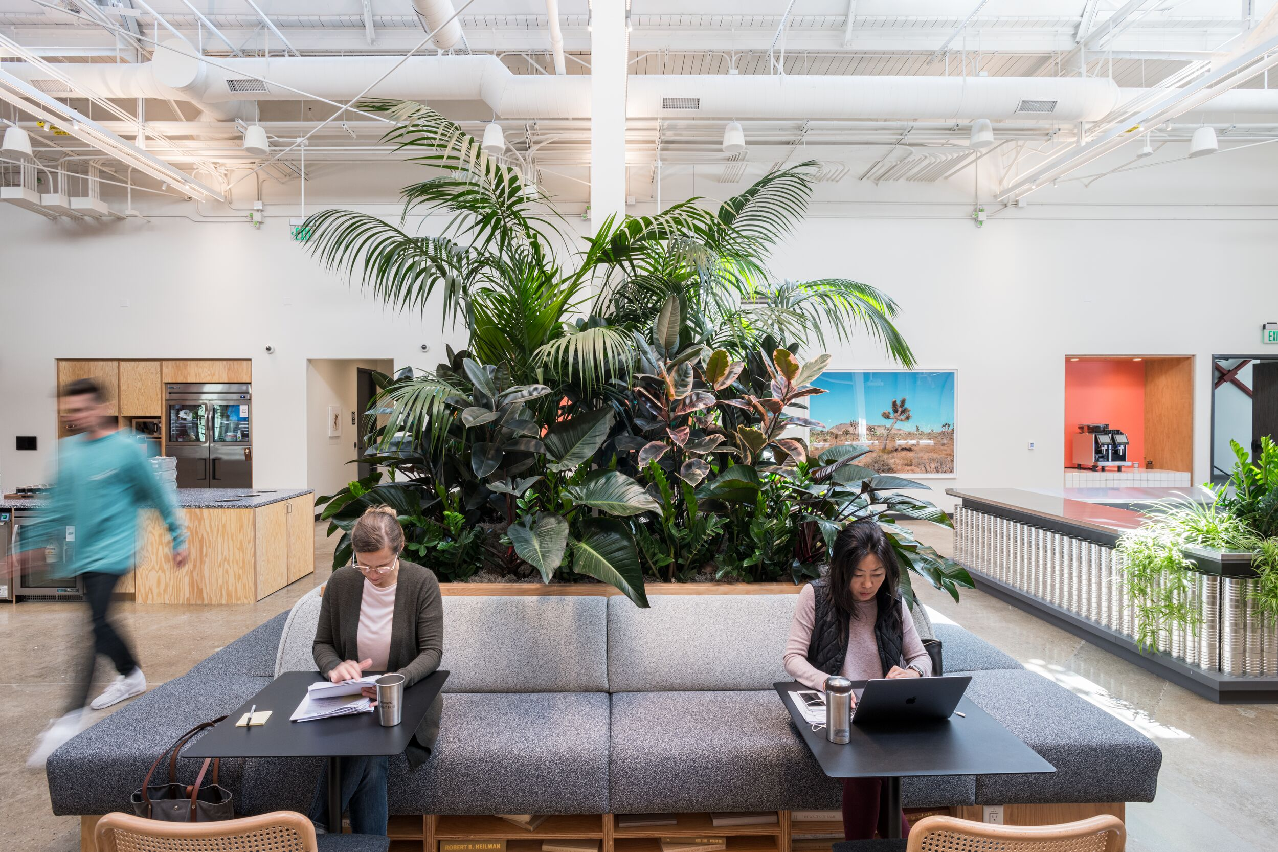 Office Space For Rent In Los Angeles Coworking Shared Space Wework